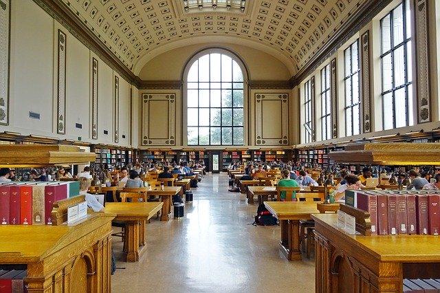 アメリカの医学部に留学するには?教育内容や留学の流れを徹底解説!